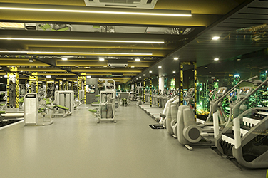 Gym Interior Designer